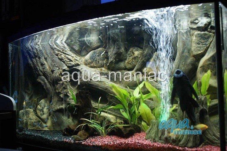 3d aquarium background amazon design for tropical fish tanks for 3d fish tank