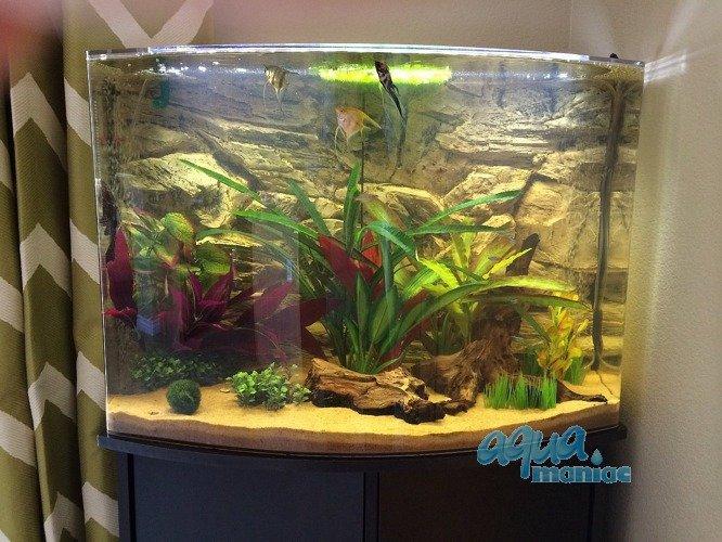 aquarium background for juwel aquarium trigon 350 3d rock background. Black Bedroom Furniture Sets. Home Design Ideas