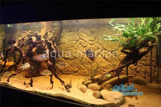 3D thin rock background 146x45cm