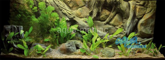 JUWEL RIO 300 3D amazon background 117x54cm in 3 sections