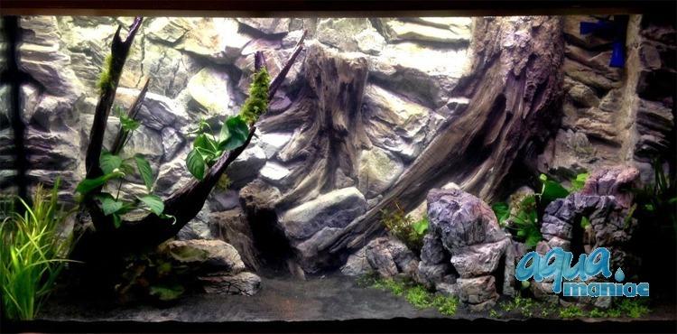 aquarium background for juwel rio 400 aquarium 3d root. Black Bedroom Furniture Sets. Home Design Ideas