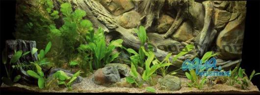 Long aquarium root ornament