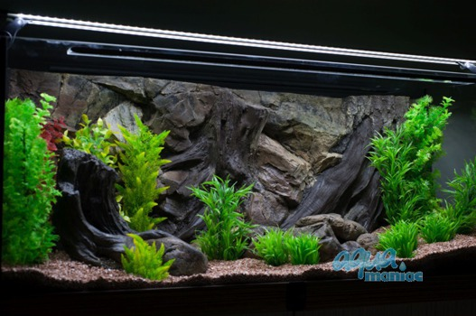 Long aquarium root ornament