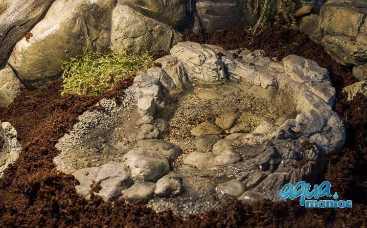 Terrarium Pool for reptiles - large