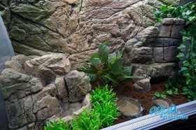 Mini Terrarium Waterfall 01  - 30cm high
