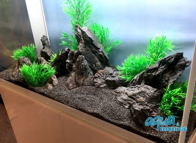 Aquascape Ideas Aquascaping Rocks