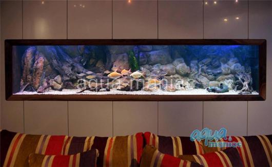 3D amazon background 196x45cm