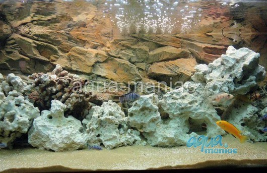 3D beige rock background 117x54cm