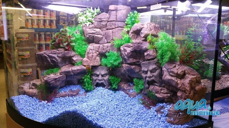 Aquarium Terrarium small ledge