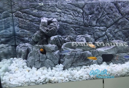 JUWEL RIO 300 3D thin grey rock background 117x54cm in 3 sections