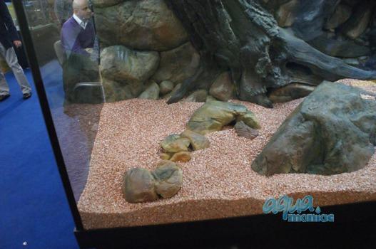 Mini aquarium stone in beige colour