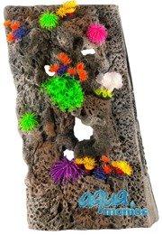 Module Limestone Background 40x60cm with corals